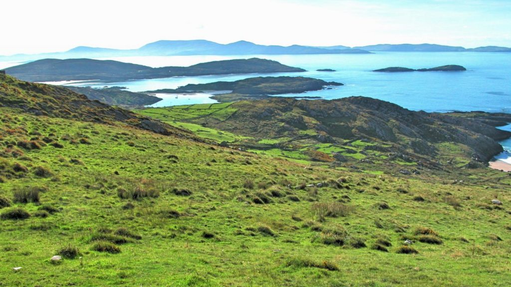 Irish Pure Irland