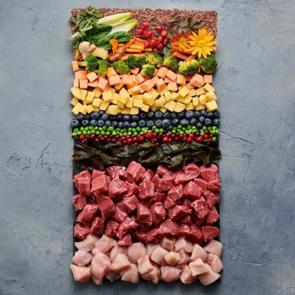 Hundefutter ohne Getreide Premium Tockenfutter