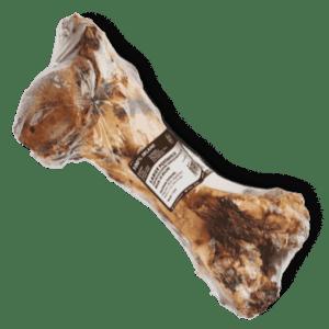 Oberschenkelknochen vom Rind4